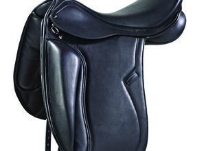 PDS INTEGRO BY CARL HESTER
